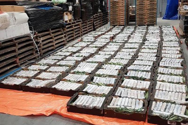 1000 kg kokainy znalezione między owocami w Oudenbosch.