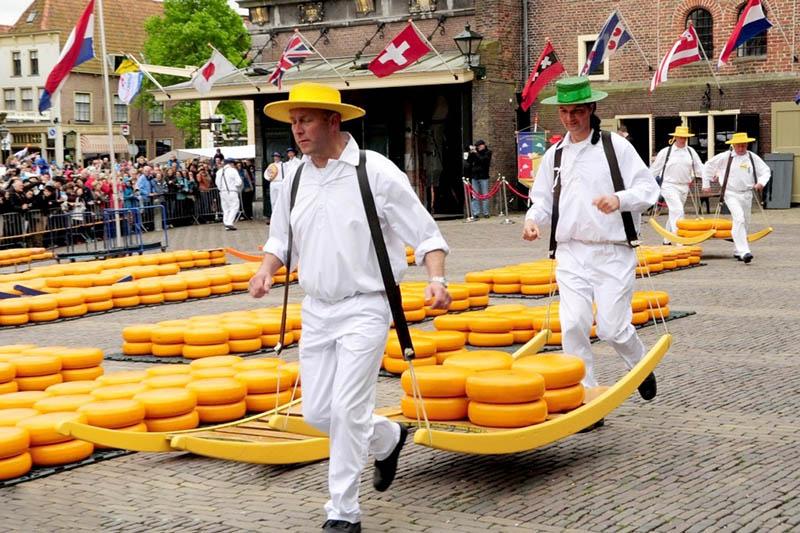 Warto zobaczyć , targ serów w Alkmaar.
